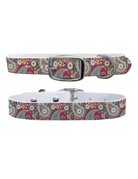 C4 Belts C4 Paisley Magenta collar