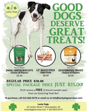 Good Dog Treat kit