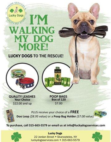 I'm Walking My Dog More kit