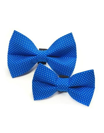 Winthrop Clothing Co. Royal Blue Polka Dot bow tie