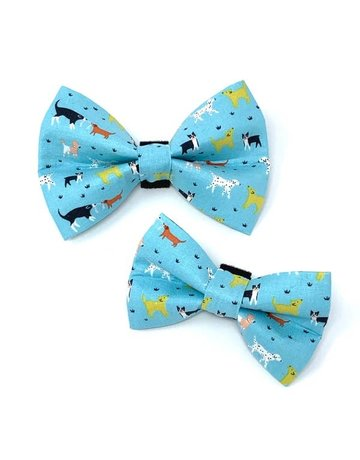 Winthrop Clothing Co. Fido bow tie