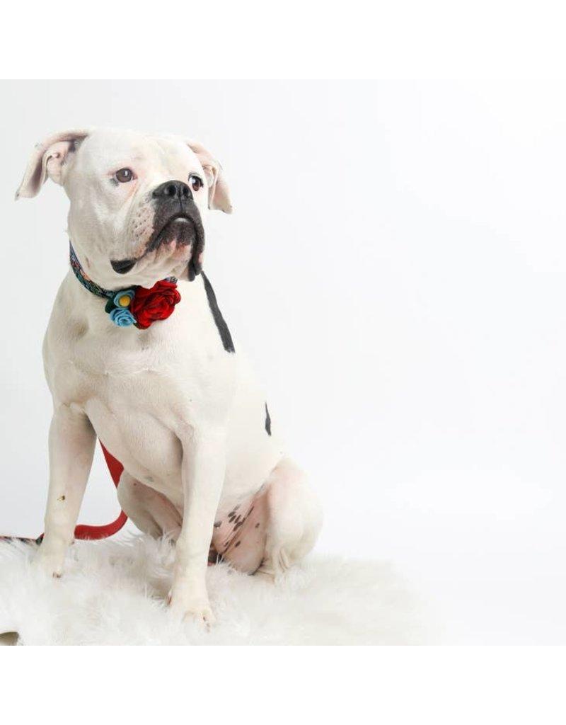 Mimi Green Dog Collar Corsage: Mae