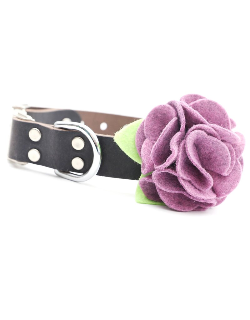 Mimi Green Dog Collar Flower: Hydrangea