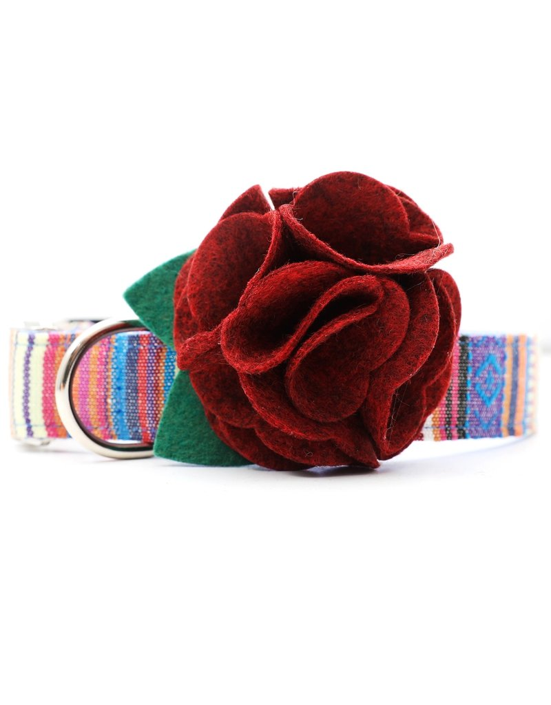 Mimi Green Dog Collar Flower: Hydrangea