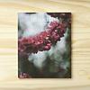 Making Magazine : No. 1 Flora
