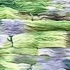 Manos del Uruguay : Alegria Space-Dyed : Botanico