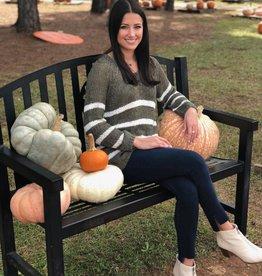 Pumpkins & Stripes Sweater Olive