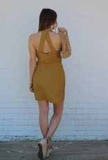 Explorer Dress Camel