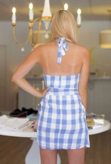 Periwinkle Picnic Dress