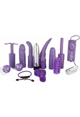 DIRTY DOZEN SEX TOY KIT - PURPLE