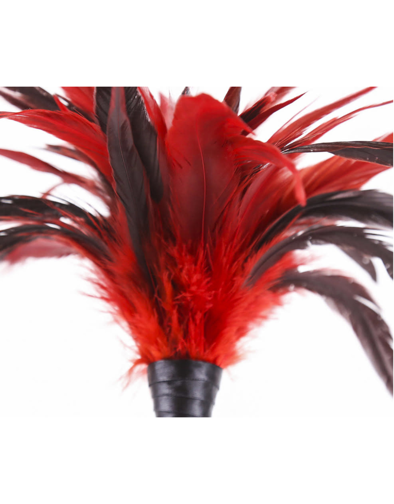 FEATHER TICKLER RED