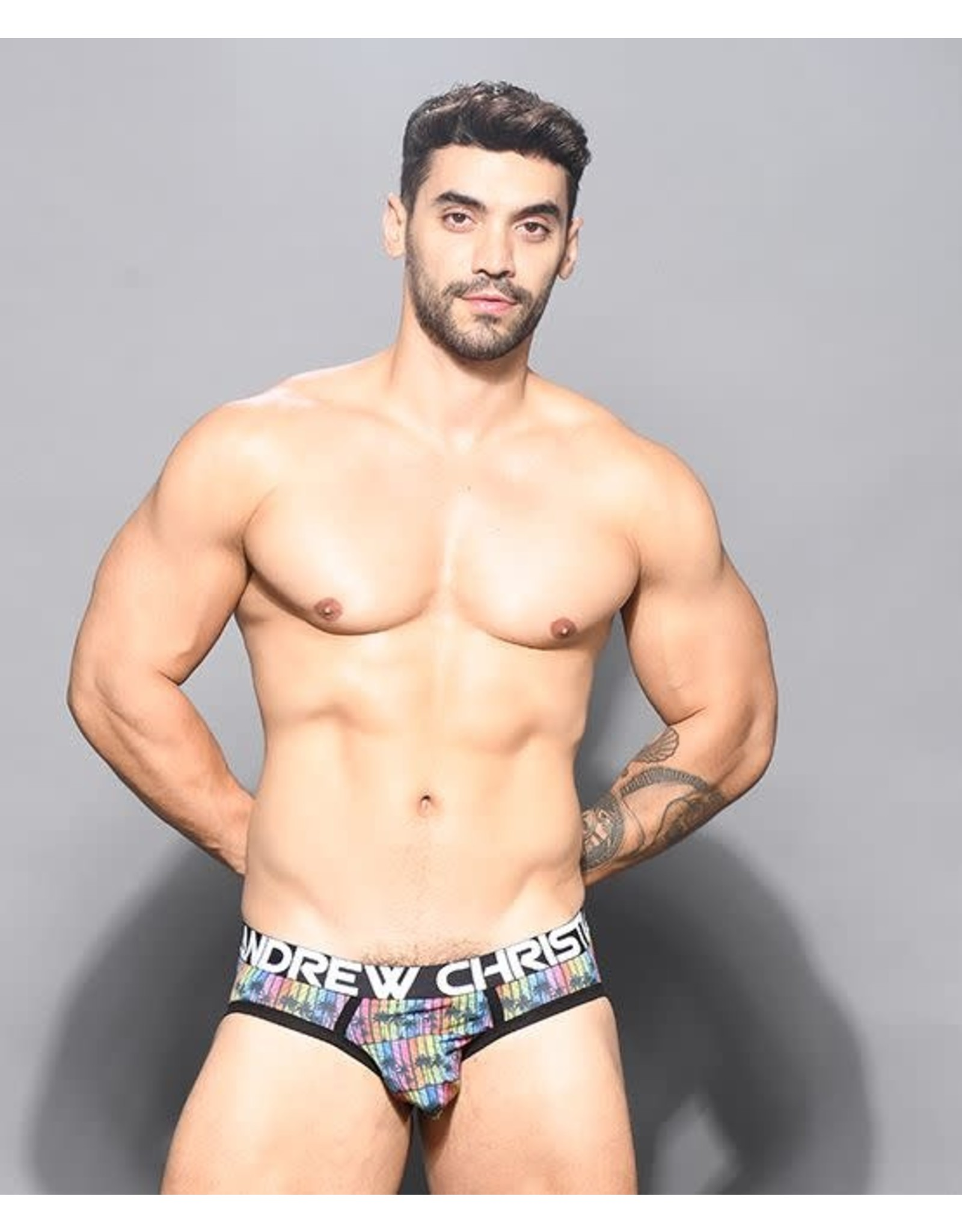 ANDREW CHRISTIAN ANDREW CHRISTIAN - DISCO PALMS BRIEF W/ ALMOST NAKED SMALL