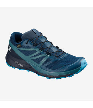 SALOMON MEN'S SENSE RIDE 2 GTX SHOE