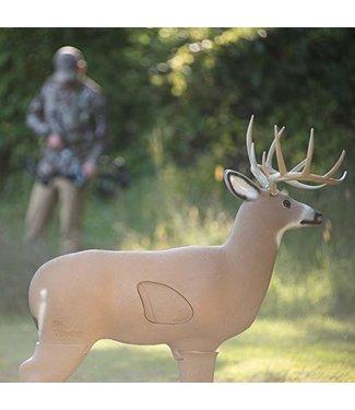 Shooter Buck 3-D Target
