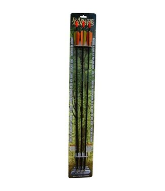 BARNETT INTERNATIONAL CAN Archery Arrows for Kids Bows