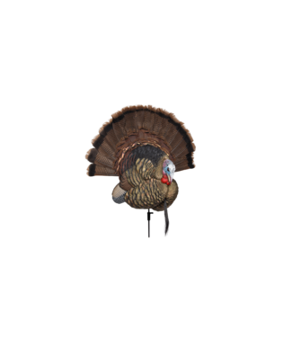 AVIAN Trophy Tom Decoy