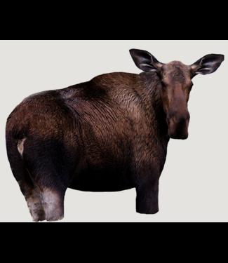 Montana  Moose II  Cow Moose Decoy