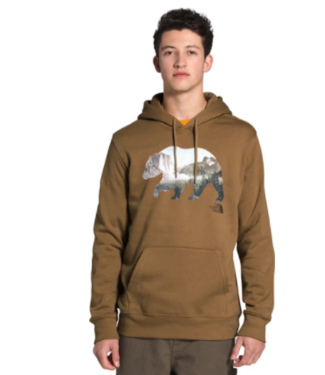 THE NORTH FACE THE NORTH FACE BEARINDA HOODIE