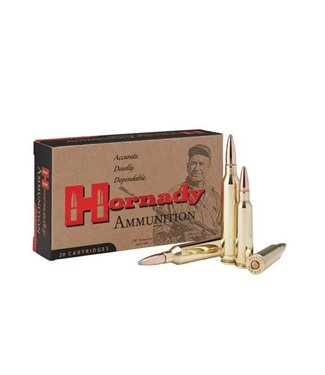 HORNADY CUSTOM 250 SAVAGE 100GR  SP