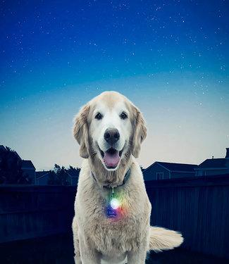 Nite Ize SpotLit Disco Select Collar Light