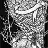 """Birdhouse Sloan Owl Deck - 8.5"""""""