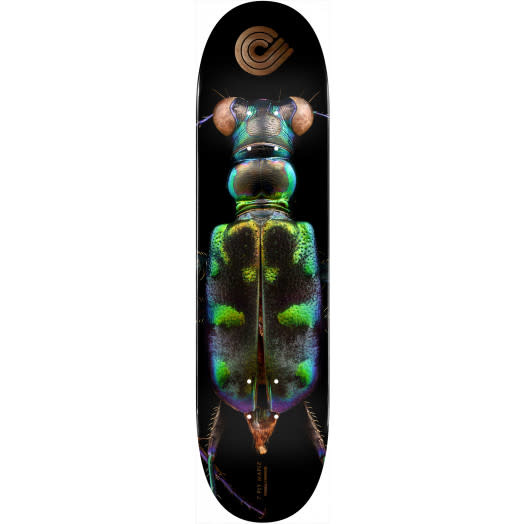 Powell Peralta Biss Tiger Beetle Deck - 8.25""