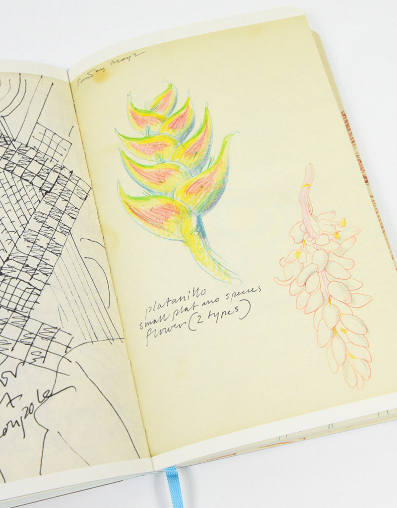 Milton Glaser: Inspiration and Process in Design