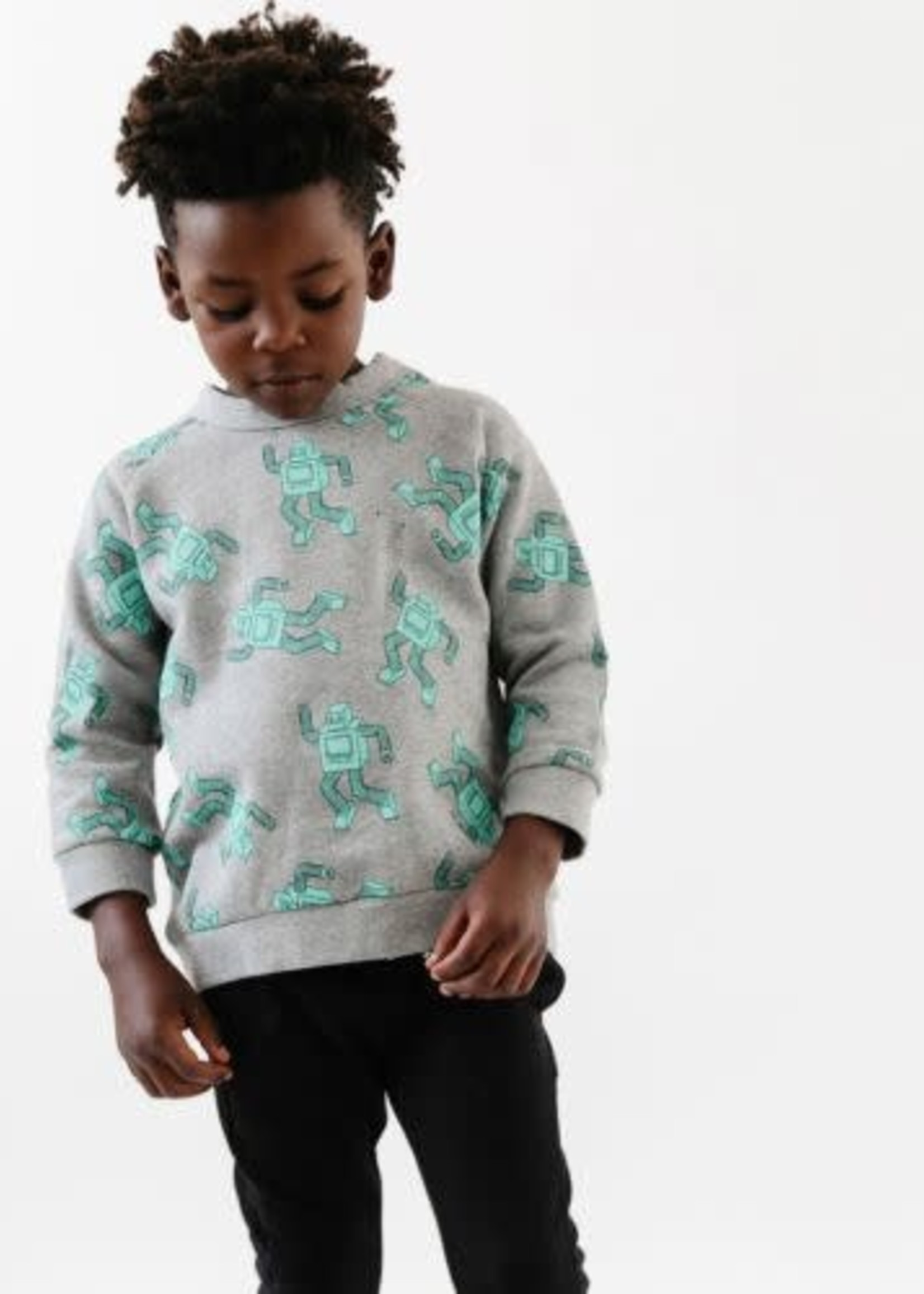 Whistle & Flute WF Robot Sweater