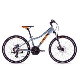 GIANT BICYCLES 2019 XTC JR Disc 24