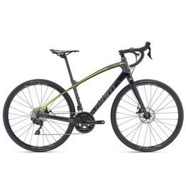 GIANT BICYCLES 2019 Anyroad Adv