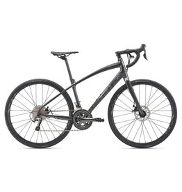 GIANT BICYCLES 2019 Anyroad 1
