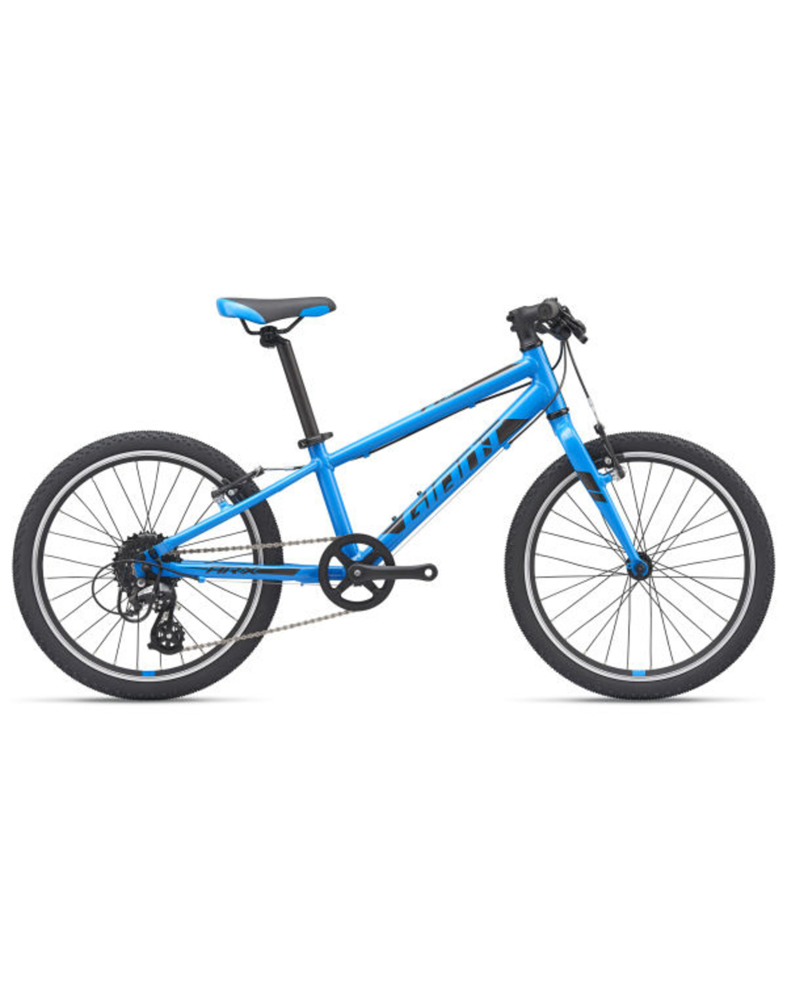 GIANT BICYCLES 2020 ARX 20