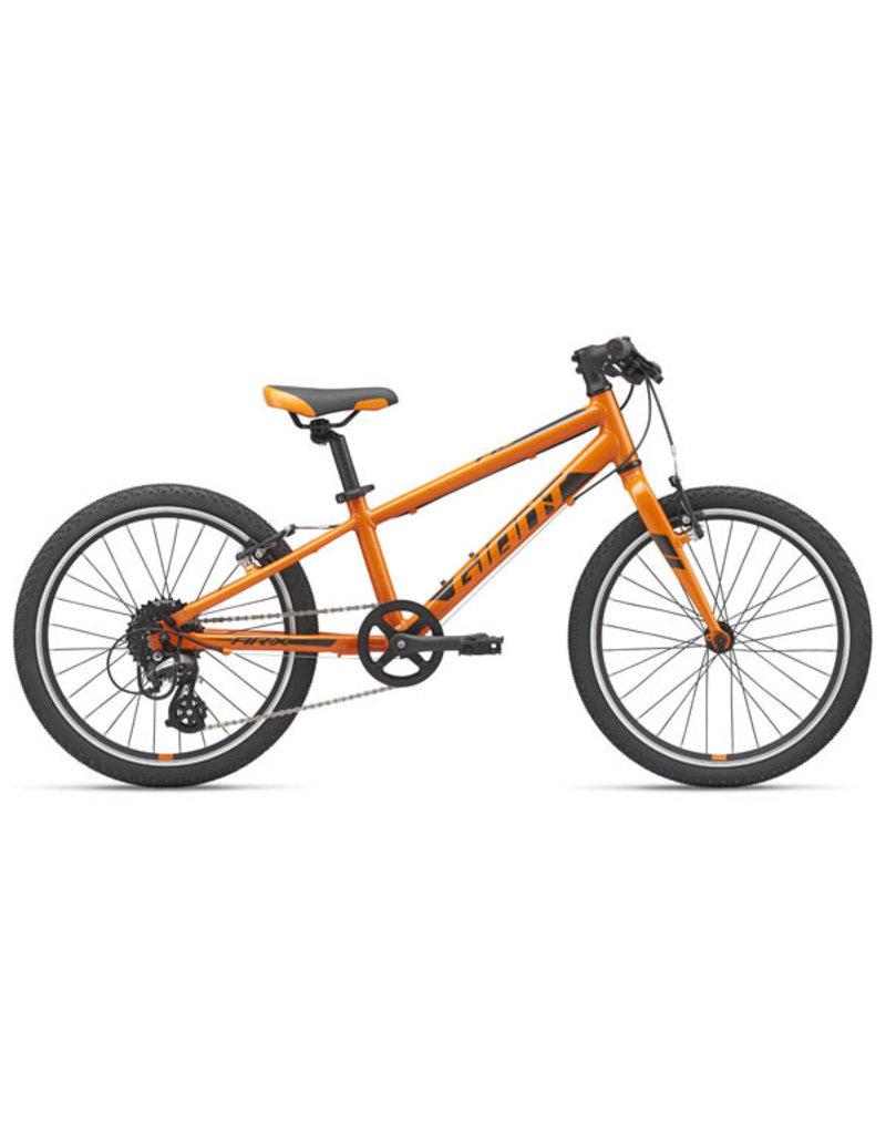GIANT BICYCLES 2020 ARX 20