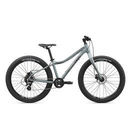 GIANT BICYCLES 2020 XtC Jr 26+ Gray OSFM