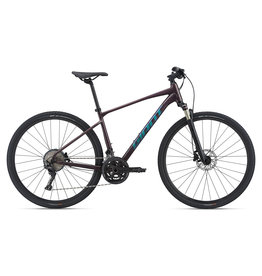GIANT BICYCLES 2021 Roam 0 Rosewood