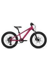 GIANT BICYCLES 2021 STP 20 OSFM