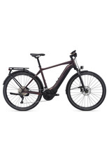 GIANT BICYCLES 2021 Explore E+ 1 Pro GTS Rosewood