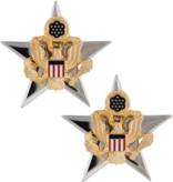 No Shine Insignia Army Insignia - Gerneral Staff Officer