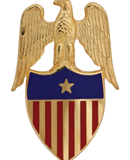 Army Insignia - Aide to the Brigadier General