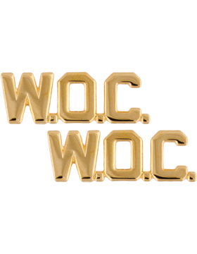 No Shine Insignia Army Insignia - WOC Officer