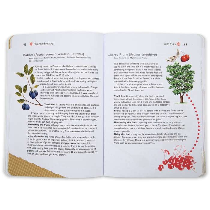 Foraging for Wild Foods Book