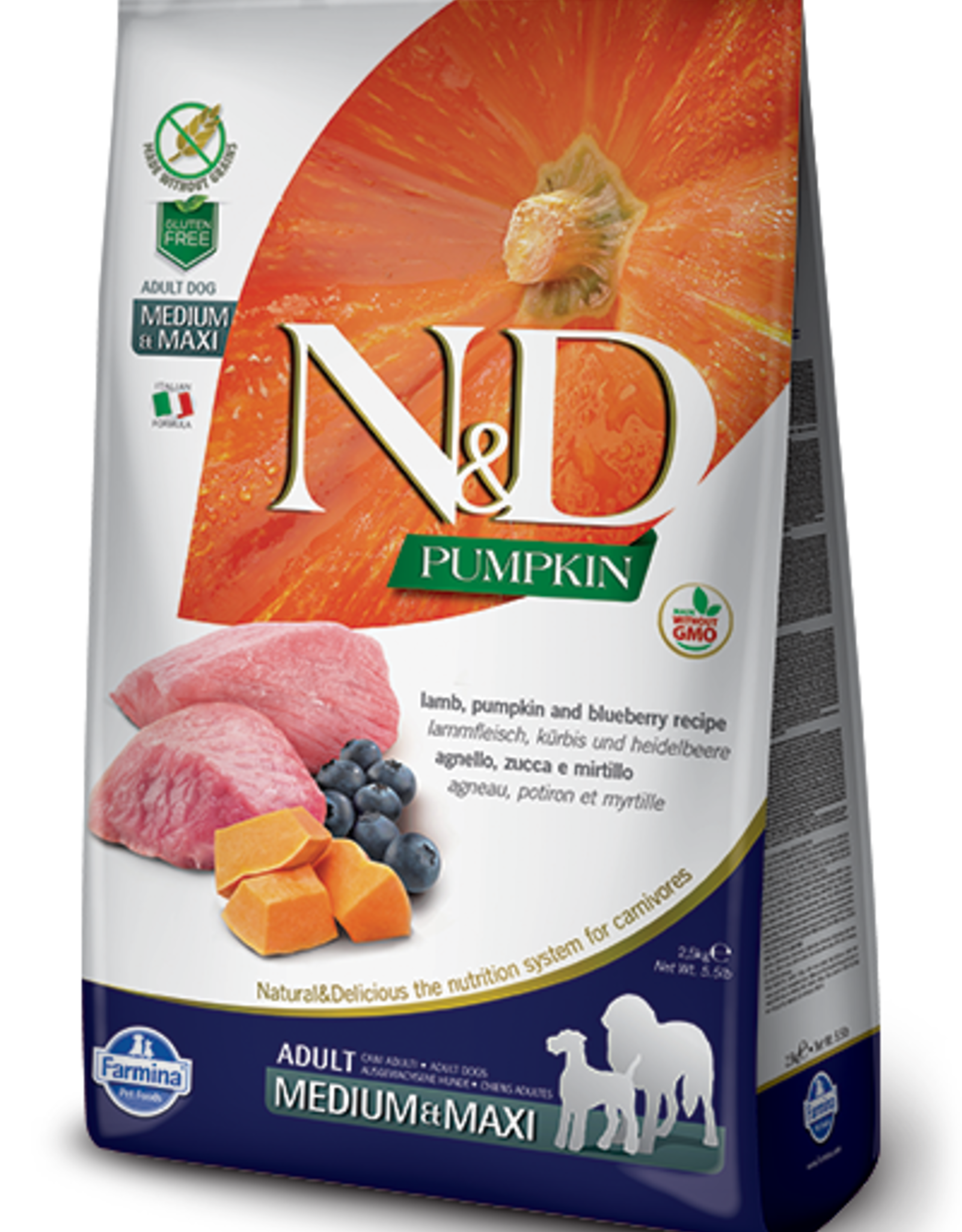 Farmina Pet Food Farmina Dog Dry PUMPKIN GF Lamb & Blueberry