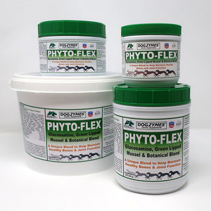 Natures Farmacy Natures Farmacy Dogzymes Phyto Flex 8 oz.
