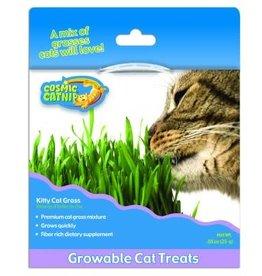 Cosmic Pet Cosmic Kitty Cat Grass