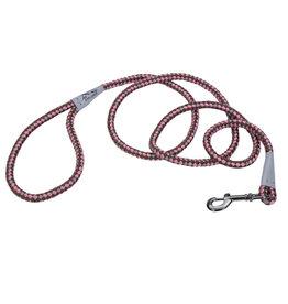 Coastal Pet Products K9 Explorer® Reflective Braided Rope Snap Dog Leash, Rosebud, 06'