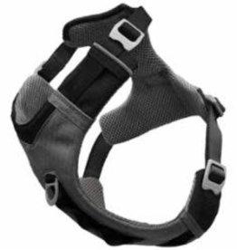 Kurgo Kurgo Muck Dog Collar, Large, Prepster Stripe Gray