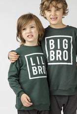 Mi and Fi Big Bro