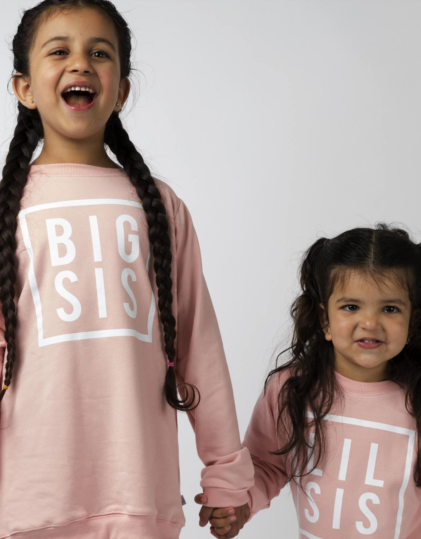 Mi and Fi Big Sis