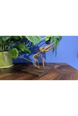Pteranodon longiceps Nestling Feeding Skeleton Replica