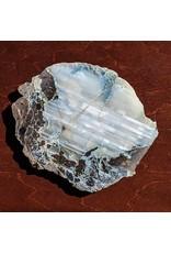 Agate Conifer Limb Cast 200x170x12mm 774g Montana